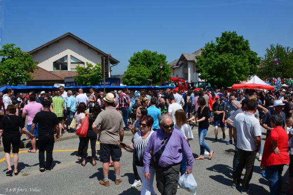 foire-aux-bestiaux-05-2018-19