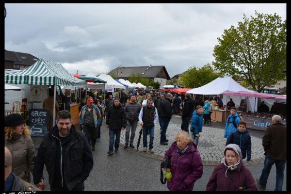 foire-aux-bestiaux-05-2016-10
